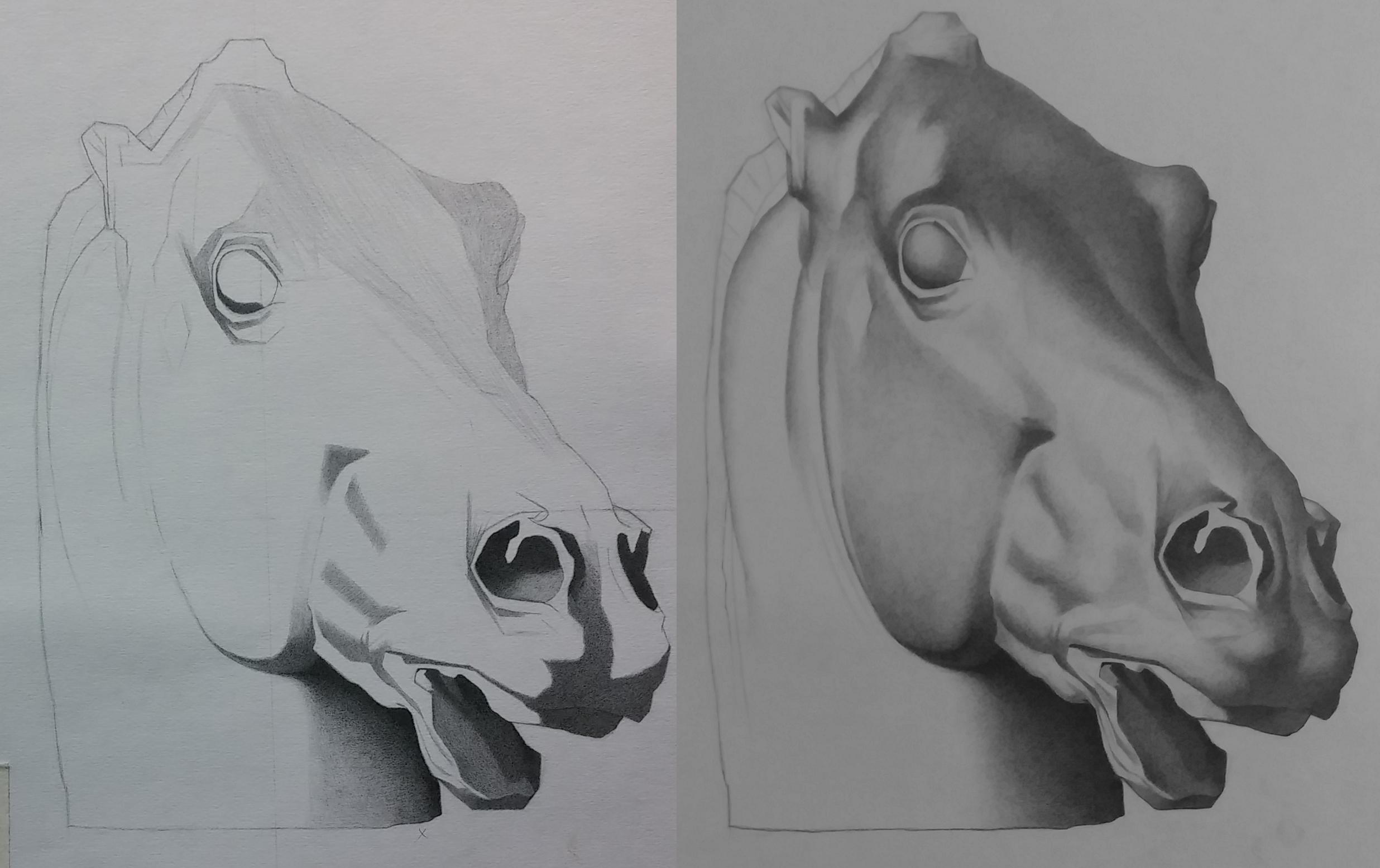 horse_bargue